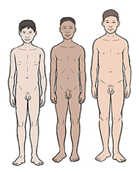 Three boys showing differences in development at age 15.